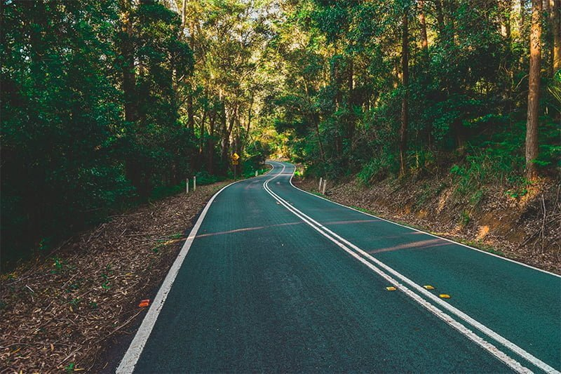 Shaded road in Royal National Park, Australia. Photo: John Elfes / Unsplash
