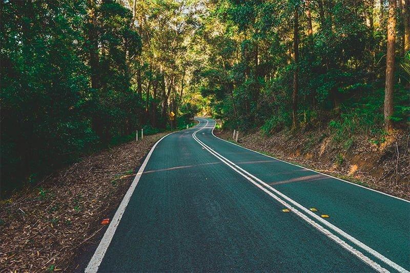 Shaded road in Royal National Park, Australia. Photo: John Elfes / Unsplash