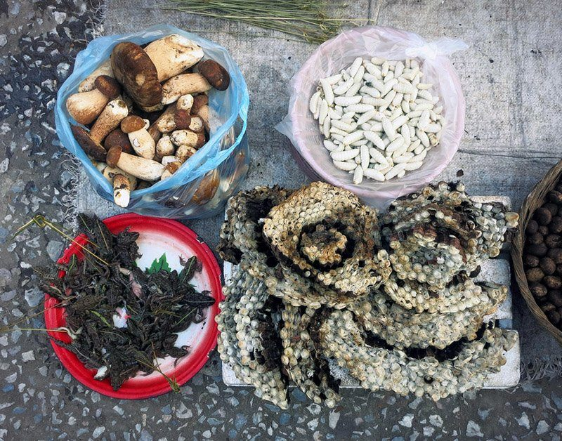 Mushrooms, frogs, honey, and larvae. At the Luang Prabang morning market.