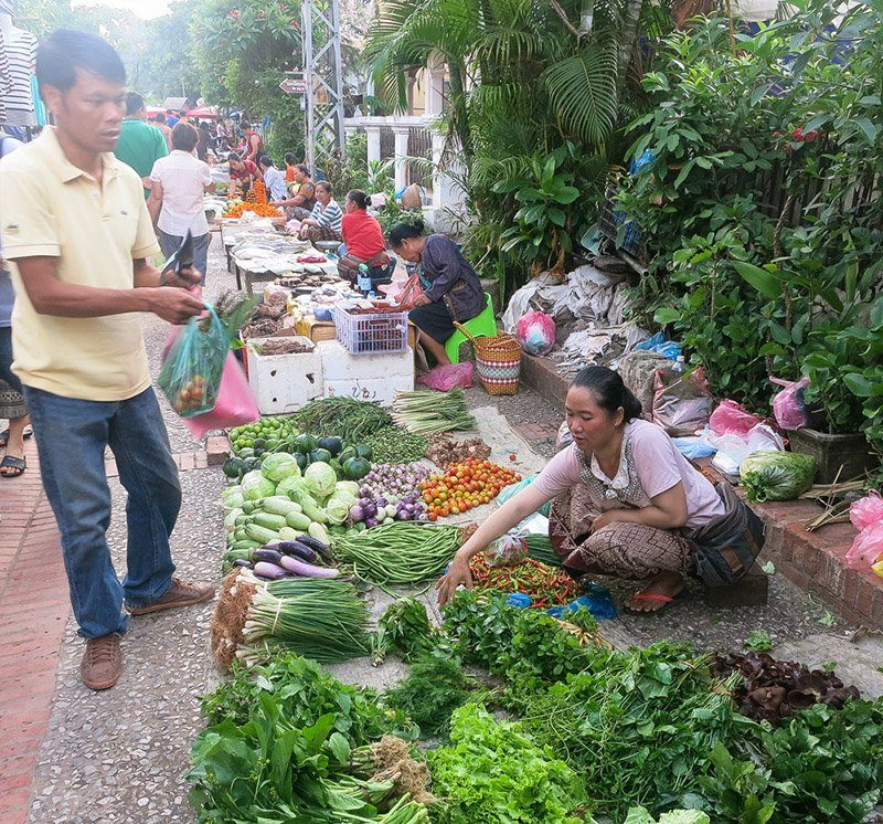 Hmong lady with her vegetables