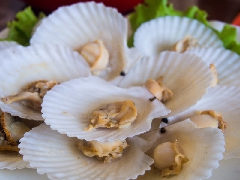 Fresh scallops served at a restaurant in Wonsan, North Korea