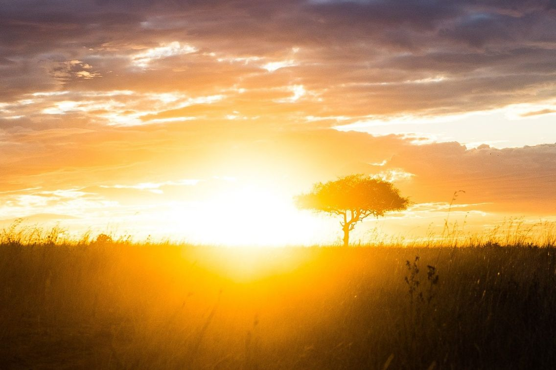 Safari in Kenya - Sunset, Maasai Mara