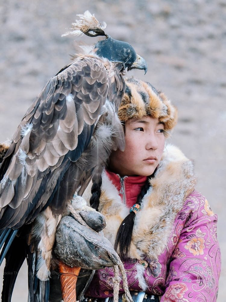 A young eagle huntress.