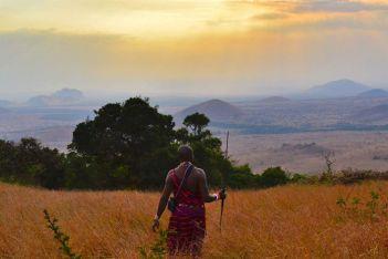 Maasai man in Kenya. Image: Sho Hatakeyama/Unsplash