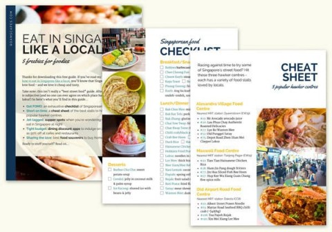 Get your Free Singapore Food Guide - Roamscapes