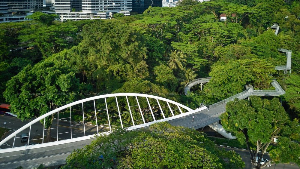 Things to do in Singapore: Walk the Southern Ridges trail. Photo © James Tan