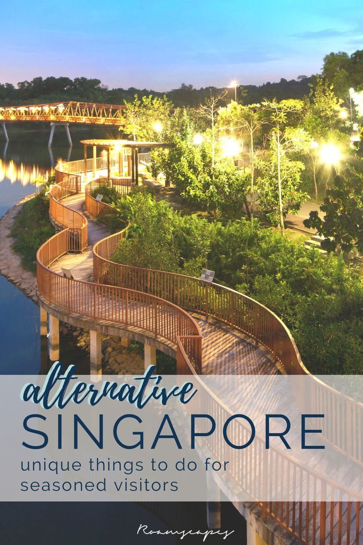 Already visited Marina Bay, Clarke Quay, and other popular tourist attractions in Singapore? This insider guide on alternative and unique things to do in Singapore will show you the city's true character.
