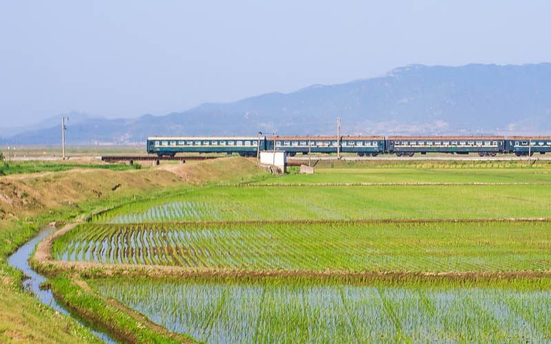 Train going past rice fields in North Korea