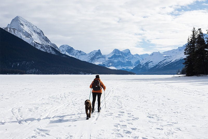 Woman skiing with dog in Alberta, Canada